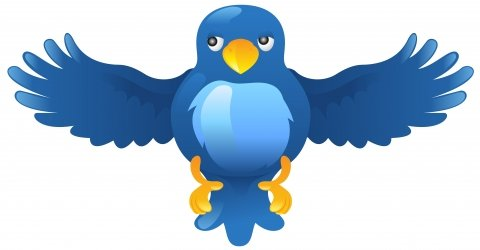 Export and save Twitter tweets, favorites, mentions, direct messages and searches as PDF, DOC, XML, CSV, TXT, XLS or HTML files!